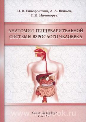 Гайворонский И.В., Анатомия пищеварительной системы взрослого человека