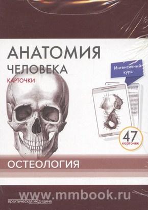 Сапин М.Р., Анатомия человека: Карточки (47шт). Остеология. Русские и латинские названия анатомических структур