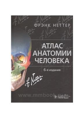 Атлас анатомии человека 6-е изд.