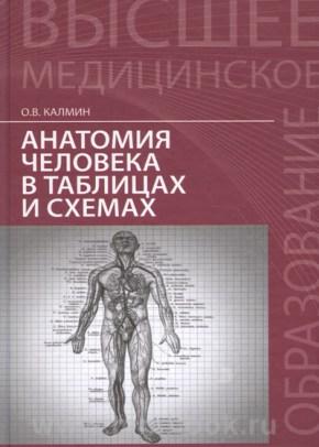 Анатомия человека в таблицах и схемах: учеб. пособие