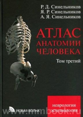 Атлас анатомии человека в 3-х т. Том 3