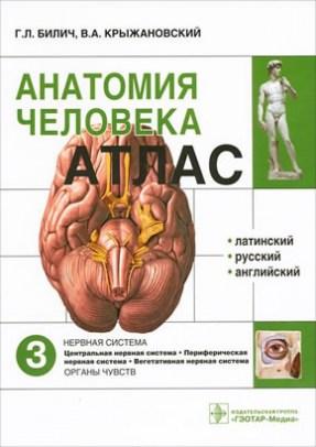 Анатомия человека : атлас. В 3-х томах. Том 3. Нервная система